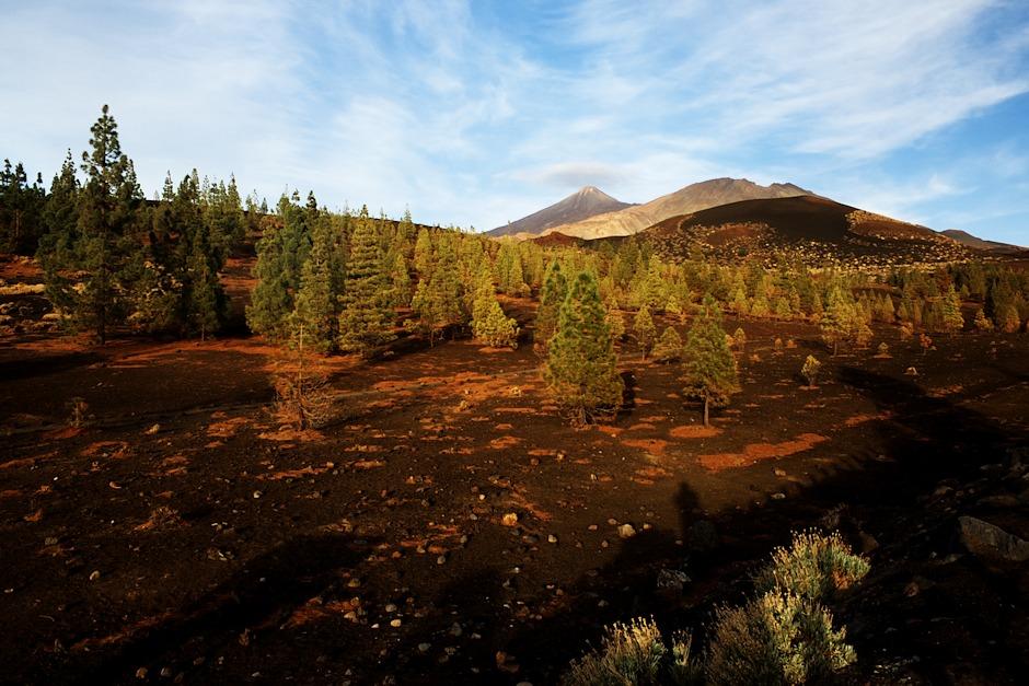 Pohled od Montaňy Samara na Teide a Pico Viejo