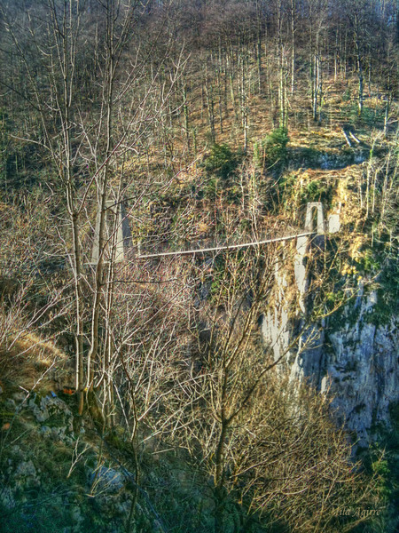 Holtzarte bridge (200 m), probably the highest wooden suspension bridge in Europe  (Zuberoa, Basque Country).