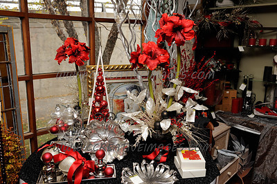 Blooms and Rooms Design Studio. McHenry IL. Holiday Magic Event 11.8.13