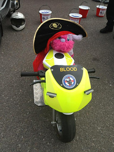 Kessi Muppet dressed as a pirate!