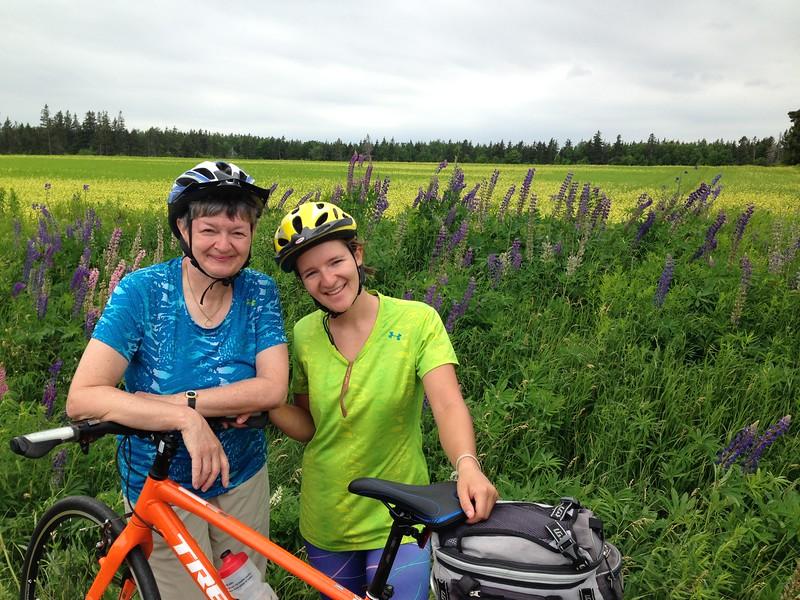 Canada: Prince Edward Island Sideroads Bike