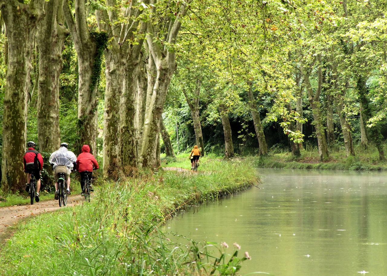 France: Bordeaux to Carcassonne Bike