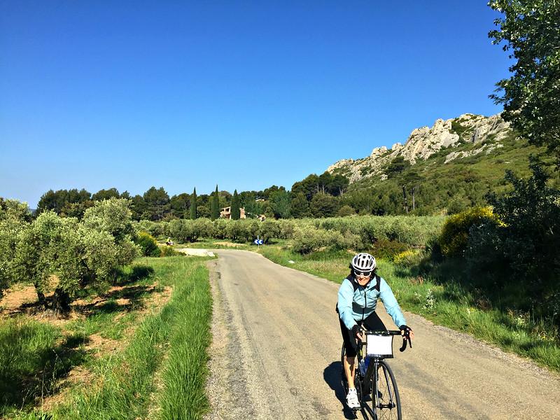 France: Provence Bike