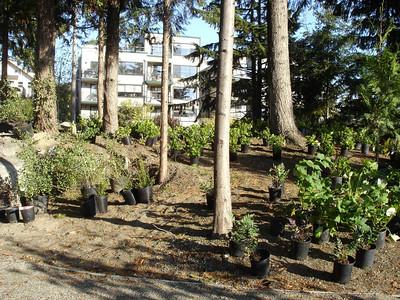 Fremont Peak Park 10-12-07