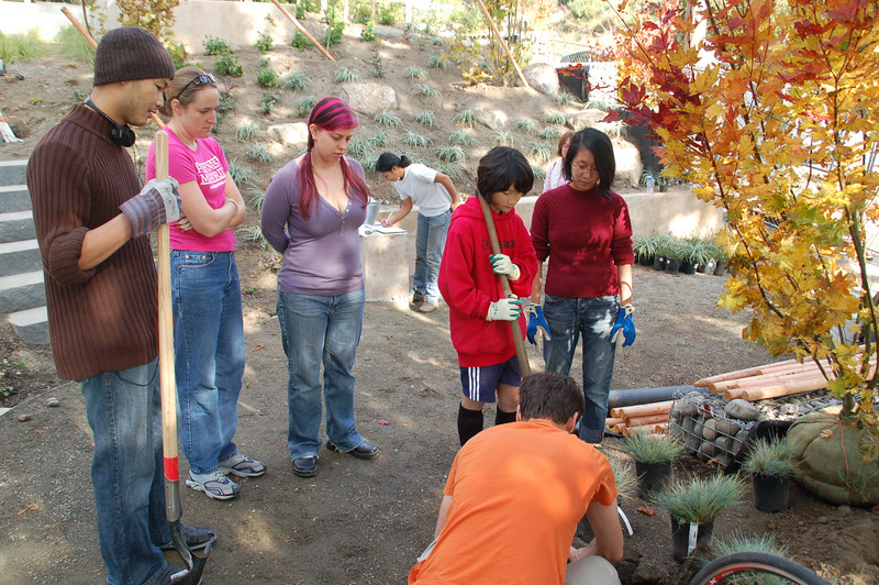 Volunteers watch a demonstration of planting techniques.