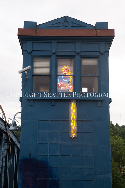 Fremont Bridge Rapunzel 103