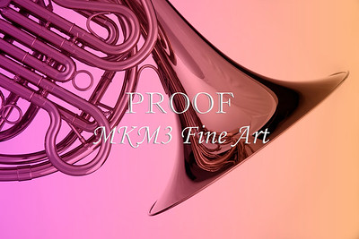 Canvas Prints Soft French Horn 2079. 05
