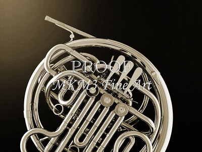 French Horn in Black and White 235.2059