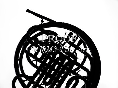 French Horn in Black and White 233.2059