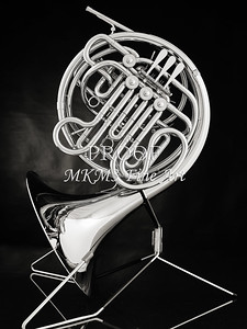 French Horn in Black and White 242.2059