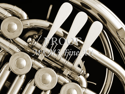French Horn in Black and White 245.2059