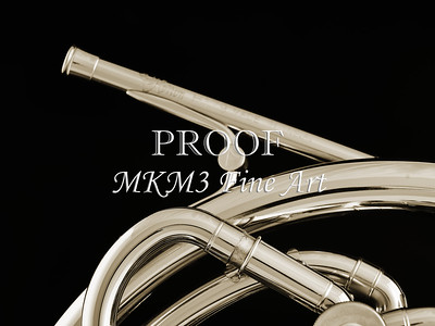 French Horn in Black and White 246.2059
