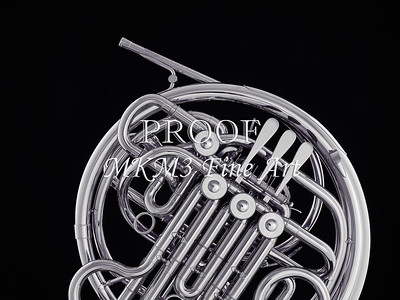 French Horn in Black and White 238.2059