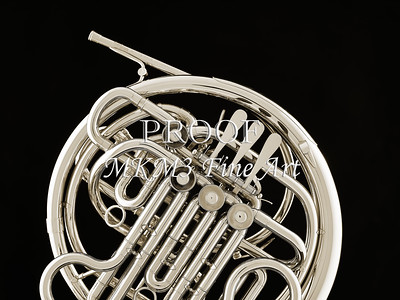 French Horn in Black and White 236.2059