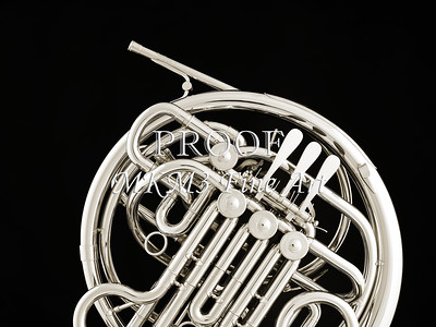 French Horn in Black and White 240.2059