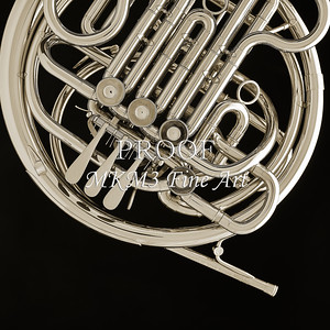 French Horn in Black and White 237.2059