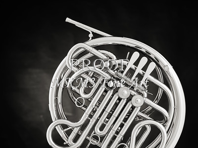 French Horn in Black and White 243.2059