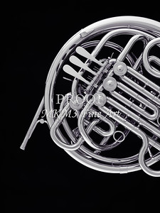 French Horn in Black and White 239.2059