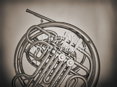 French Horn in Black and White 231.2059