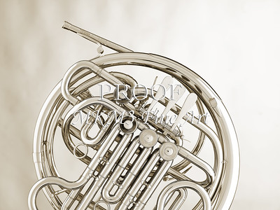 French Horn in Black and White 234.2059