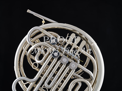 French Horn in Color 136.2059