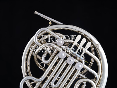 French Horn in Color 141.2059