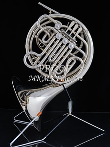 French Horn in Color 142.2059