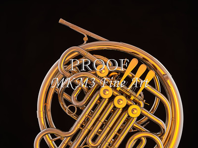 French Horn in Color 139.2059
