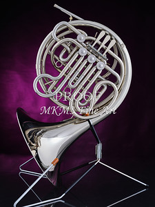 French Horn in Color 143.2059