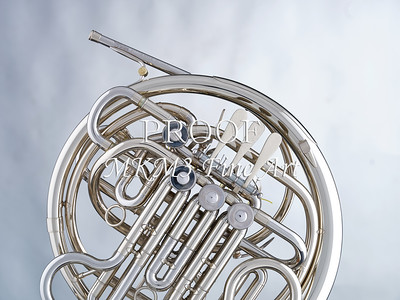 French Horn in Color 134.2059