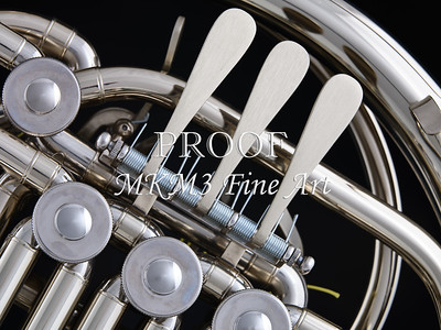 French Horn in Color 146.2059