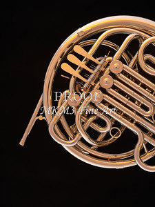 French Horn in Color 140.2059