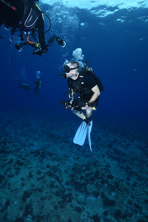 French Polynesia People Photos - Grouper Spawning