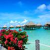 Bora Bora Intercontinental Le Moana-2