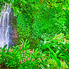 Tahiti waterfalls, Marae and sights-19