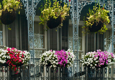 """' Balcony Garden ' New Orleans, LA  12""""x16"""", Luster paper (12 mil) limited edition of 50"""