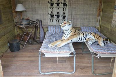 A tiger, naturally!