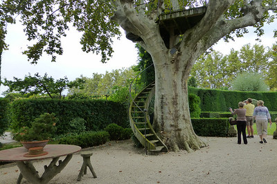 I was completely taken by the tree house in one of the Plane trees.  This tree looks very much like our Sycamores.