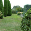 Tall sculptured trees and shrubs galore