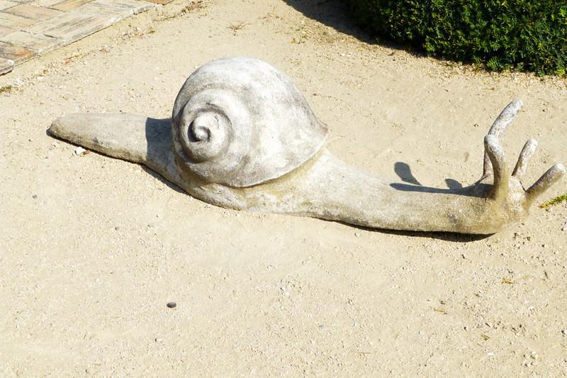The only good kind of snail...
