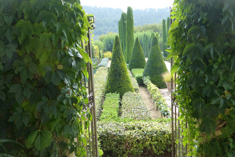 A lovely view of the garden.