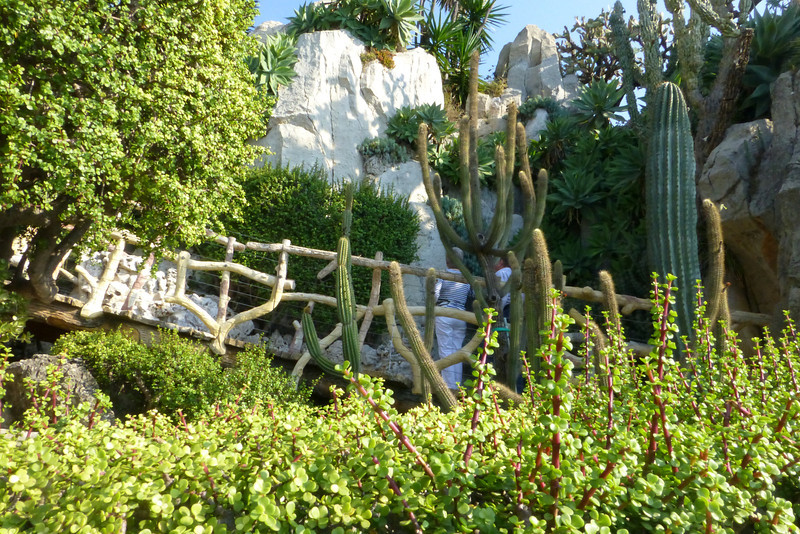 The garden was referred to as a hanging garden, as it clung to the side of the mountain.