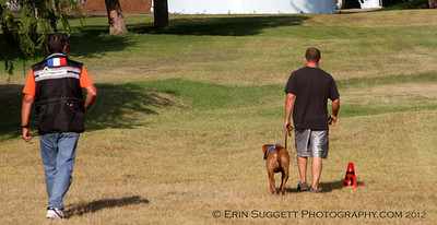 "CSAU ""Heel On Leash"" evaluation Jesse Chartier & Raymond.  A multitude of temperment evaluation tests take place at the  SCABR French Ring trial in Long Beach, CA on July 13, 2012  © Erin Suggett Photography 2012 - All Rights Reserved"