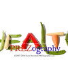 Various vegetables spelling out health