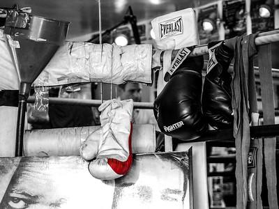 Boxing Gloves Still Life