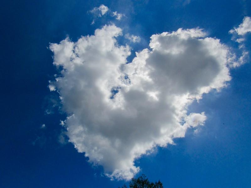 Heart Cloud, June 2018