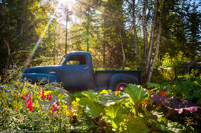 Old truck at Alaska Botanical Garden