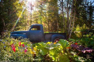 Old truck at Alaska Botanical Garden