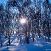 Snowscapes of Niseko