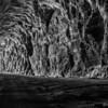Glow Worm Tunnel B&W